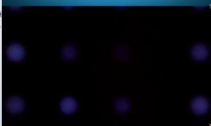 Skype 2013-11-10 02-38-50